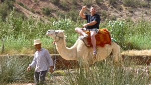 Excursions balade chameaux dans les montagnes du Haut Atlas