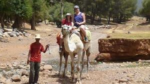 Excursions balade chameaux dans les rivières et forêts du Haut Atlas